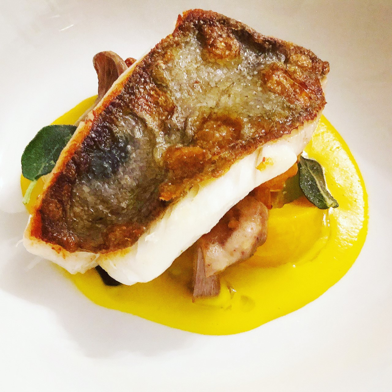 John Dory on Pumpkin Veloute